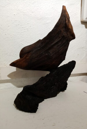 "Bog bird VIII by Ronnie Graham. Bog pine on Bog wood 9"" x 11"""